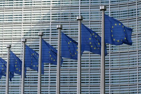 As the UK's transition period ends in one month, we reflect on our relationship with the EU and ourselves
